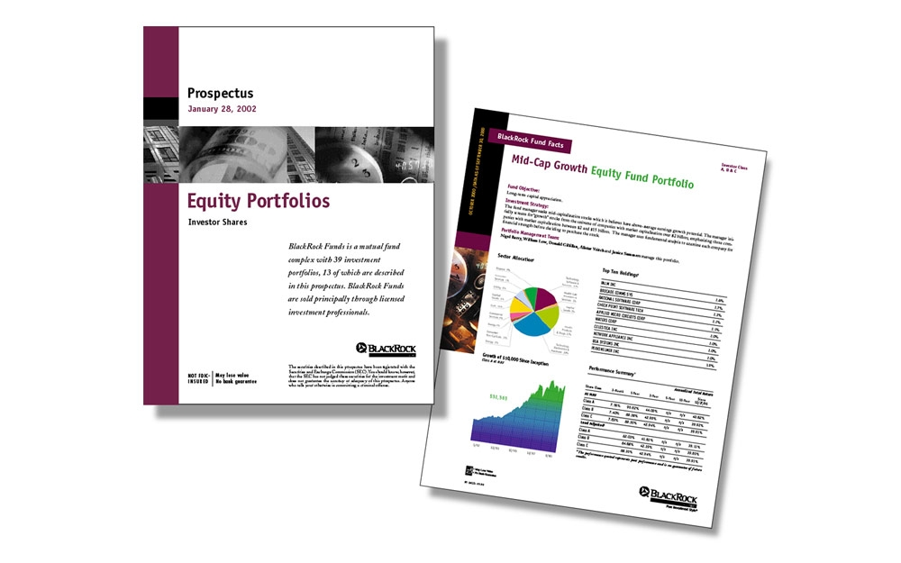 Equity Portfolio